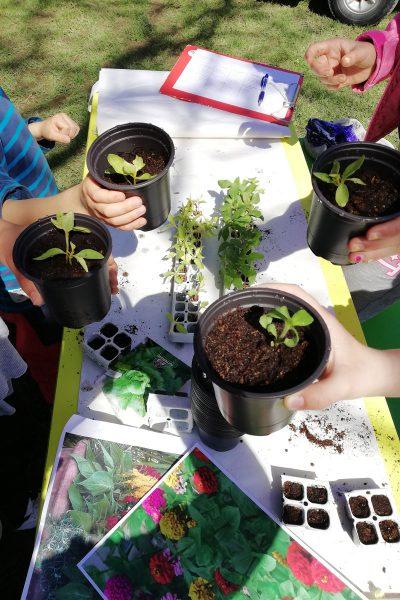 Vrtnarska delavnica za otroke