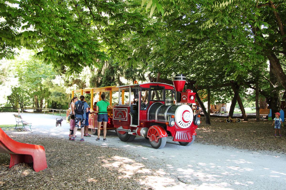 Vlak v Arboretumu Volčji Potok