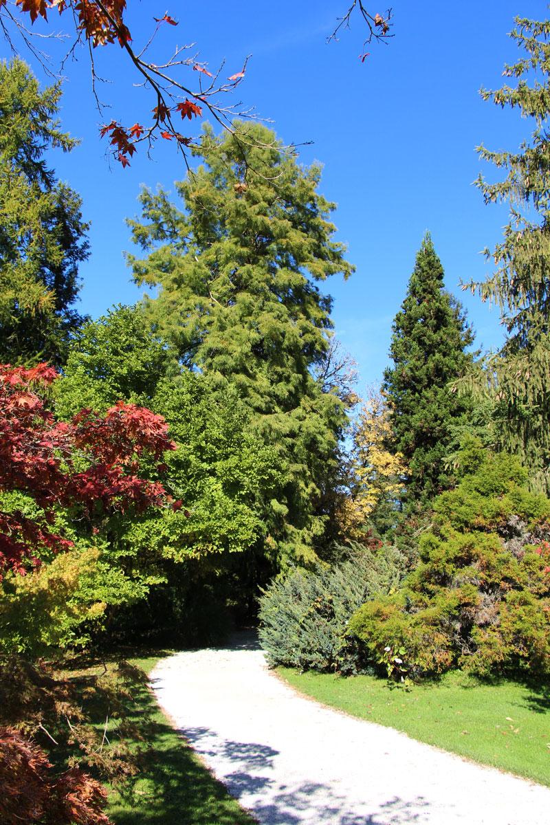 Jesen v Arboretumu
