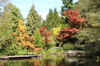 Arboretum Volčji Potok - poslanstvo