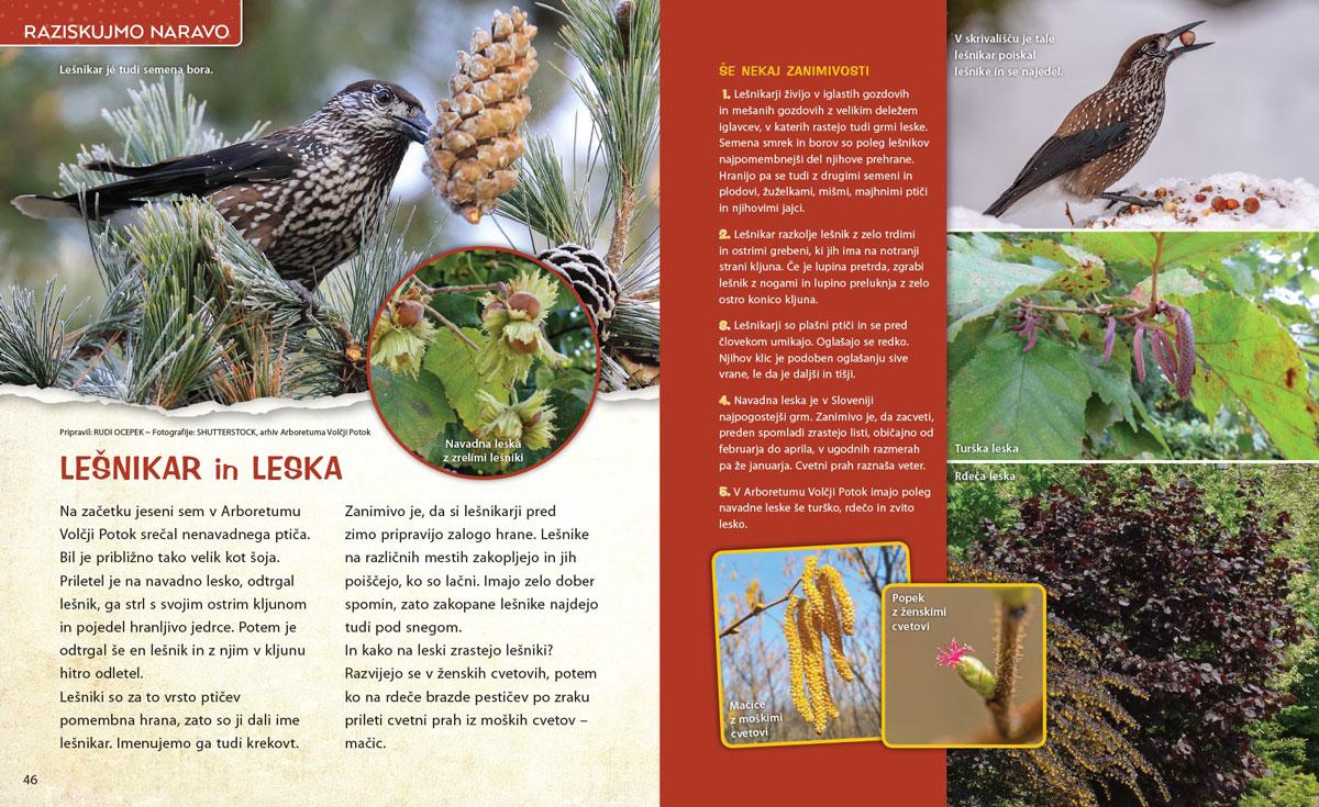 Lešnikar in leska - članek v reviji Ciciban