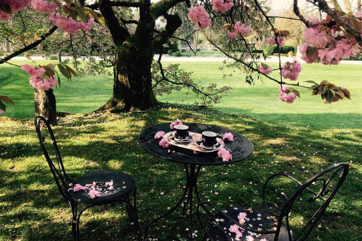 Kavarna in letni vrt Arboretum