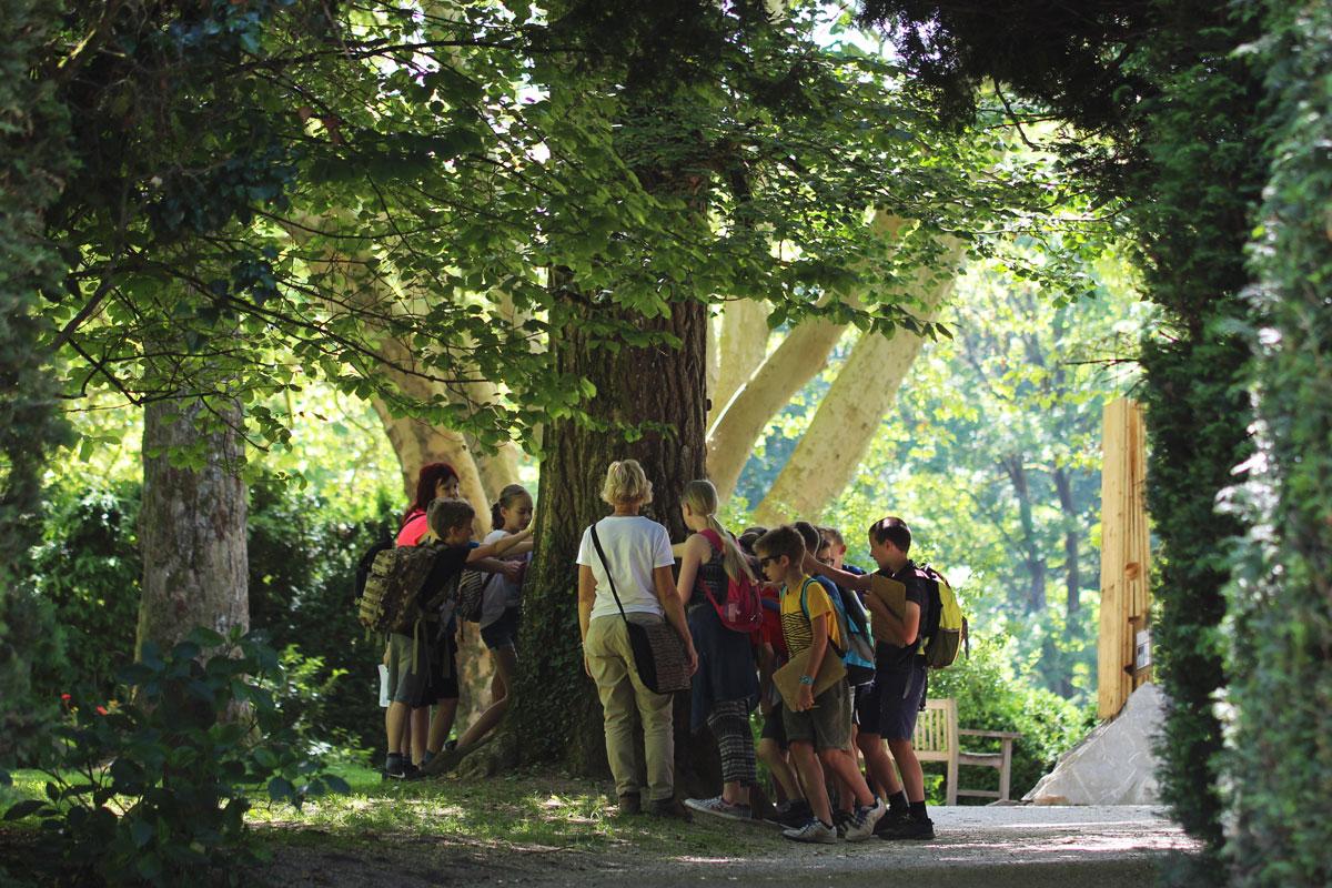 Šolska skupino ob drevesu