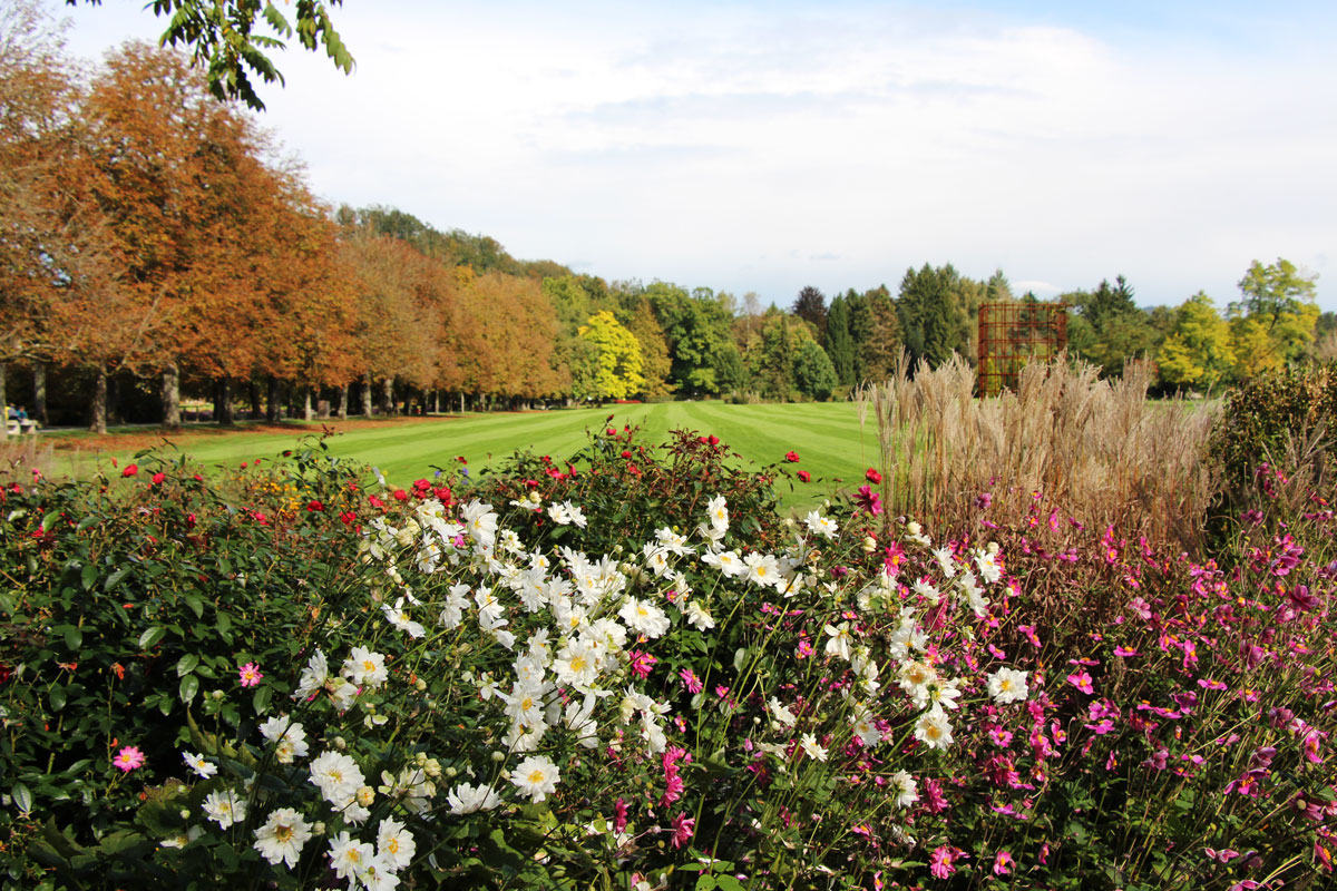 Park je cvetoč tudi jeseni