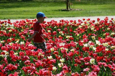 Otroci v Arboretumu