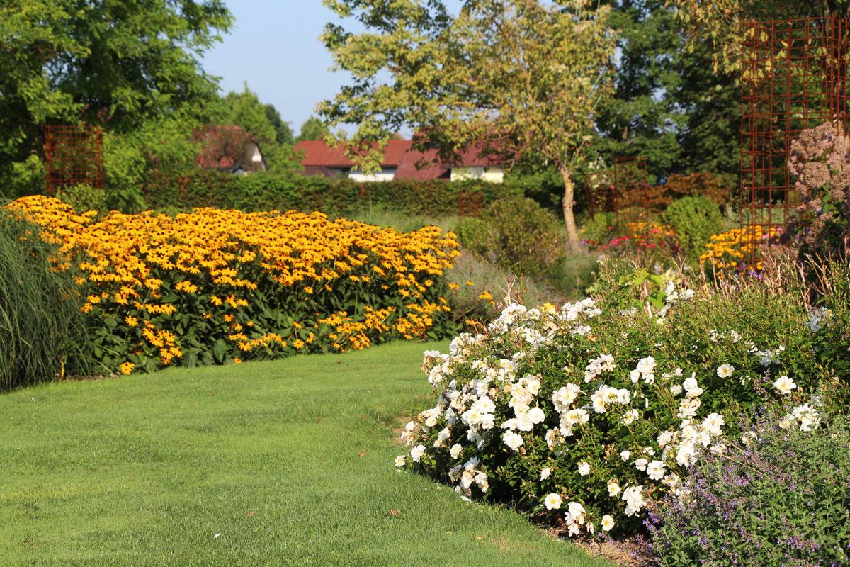 Vrtnice v parku