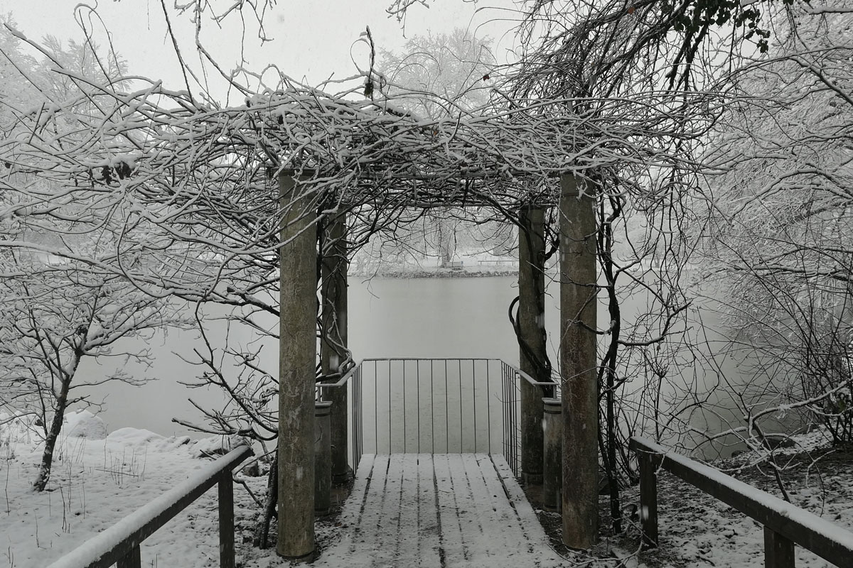 Zima v Arboretumu