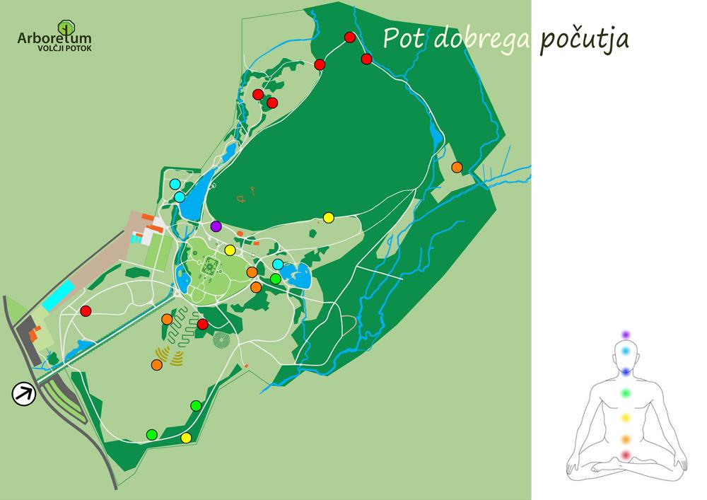 Pot dobrega počutja v Arboretumu Volčji Potok