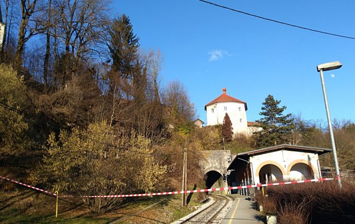 Intervencija v Kamniku
