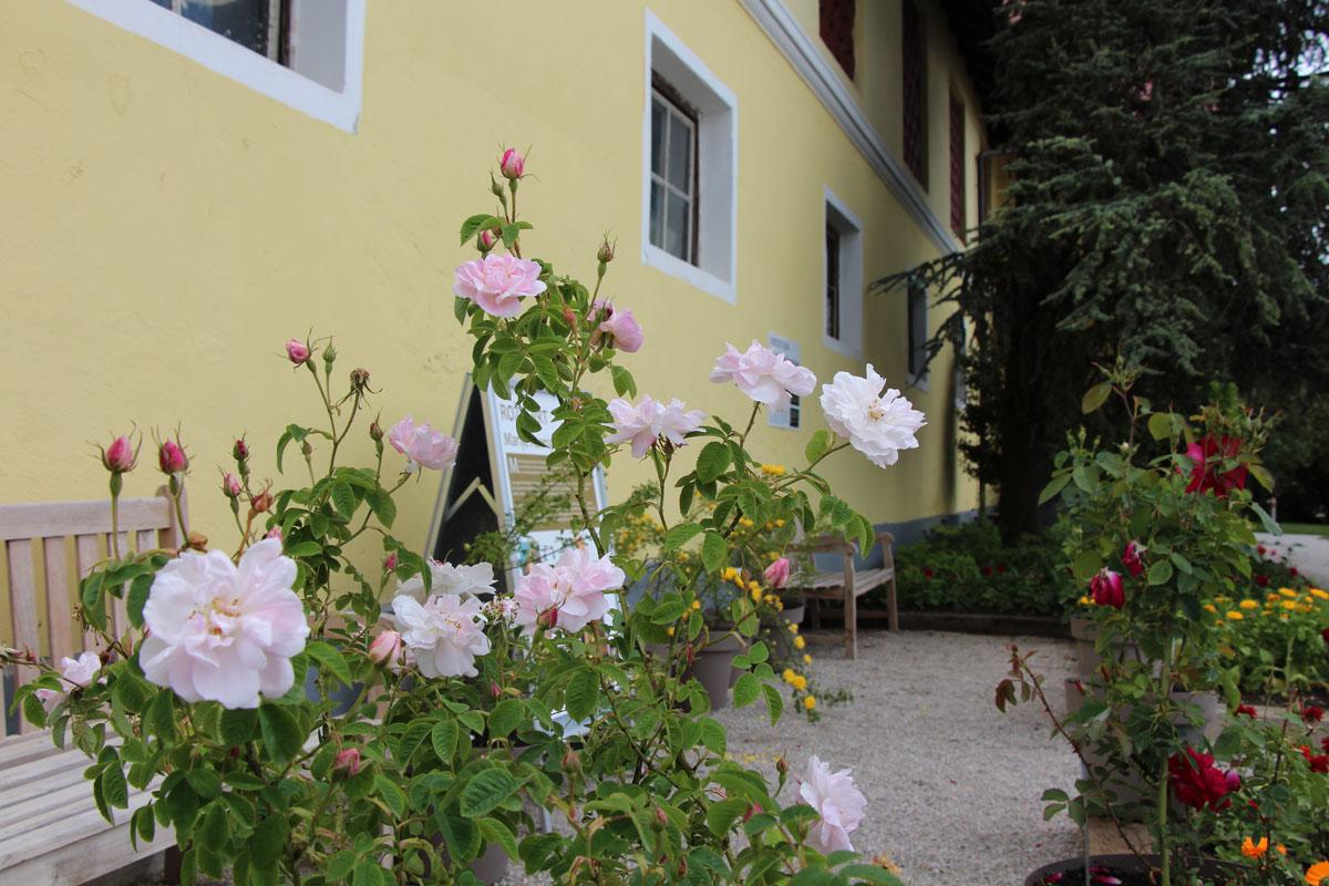 Rožni vrt Marije Auersperg Attems