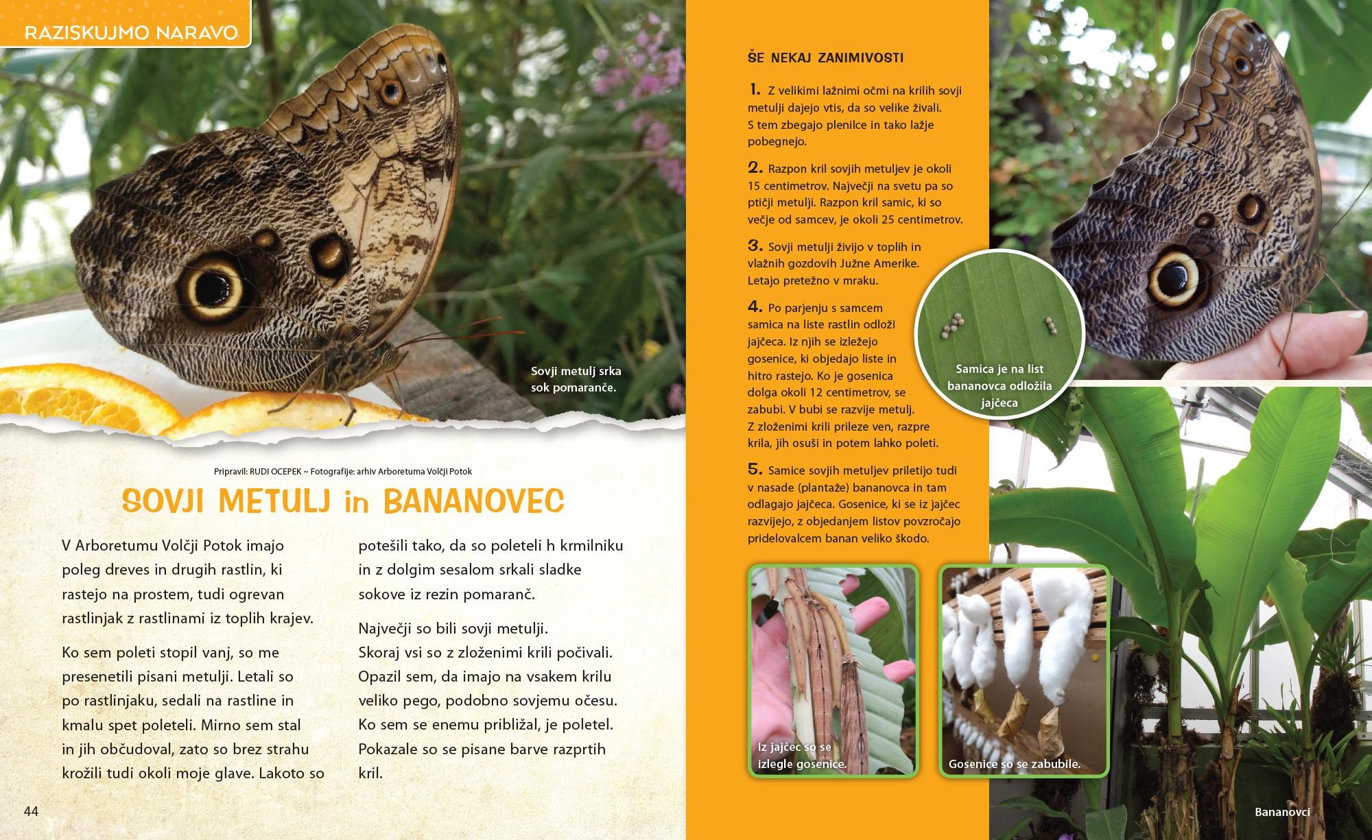 Sovji metulj - članek v reviji Ciciban