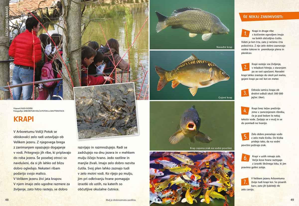 Krapi - članek v reviji Ciciban