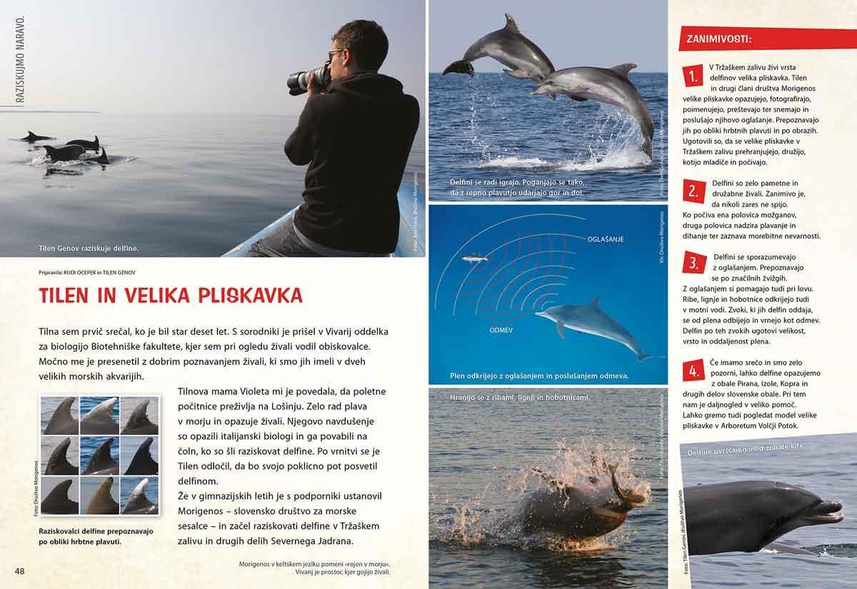 Velika pliskavka - članek v reviji Ciciban
