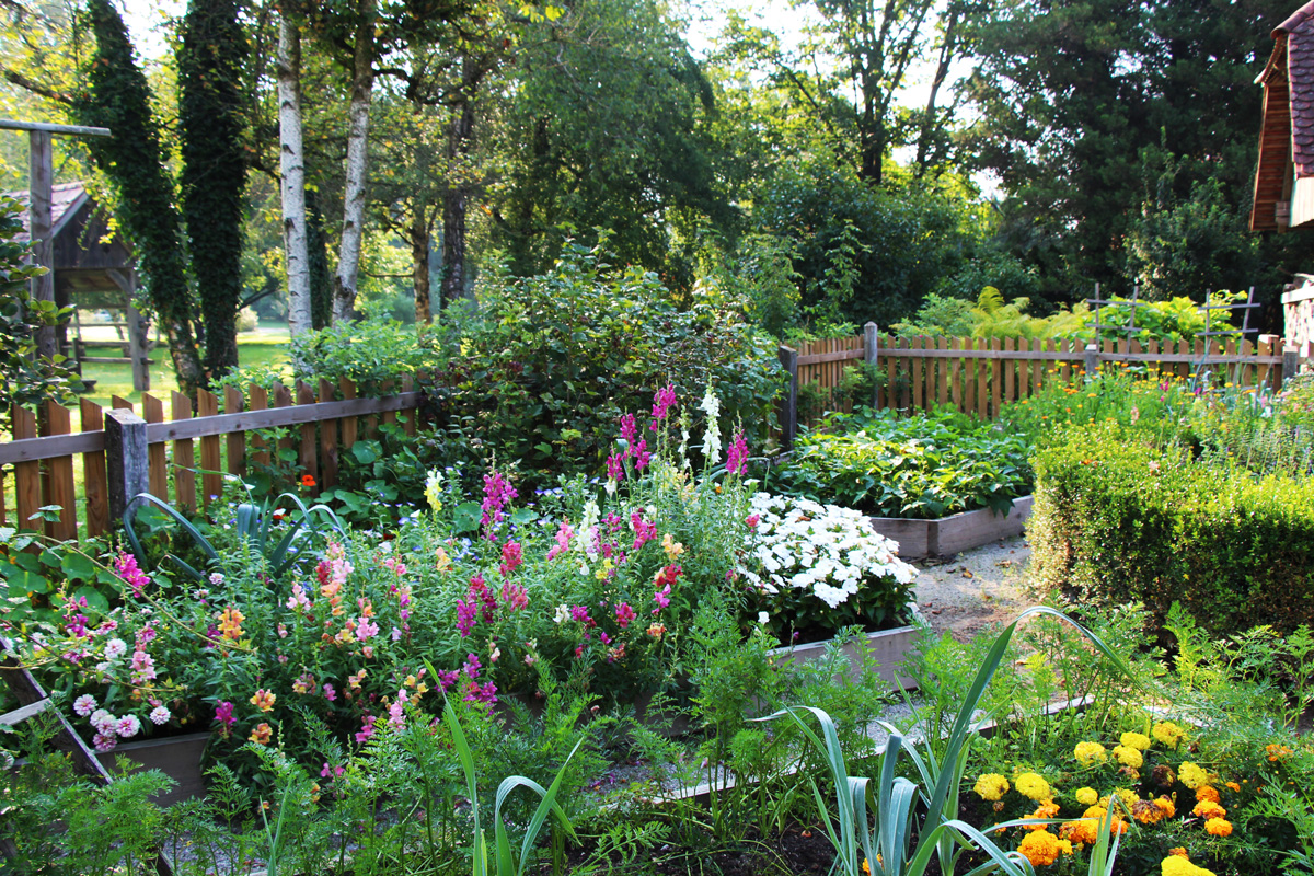 Garkelj v Arboretumu Volčji Potok