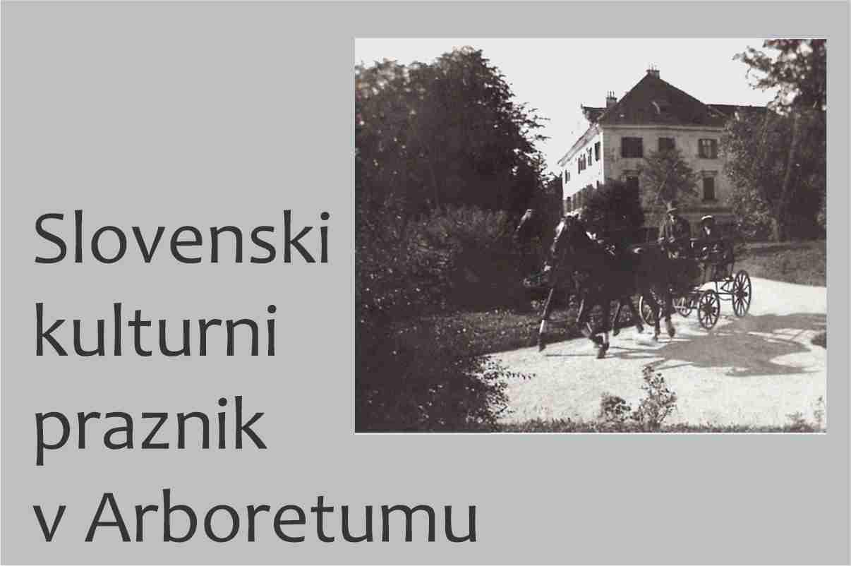 Slovenski kulturni praznik v Arboretumu