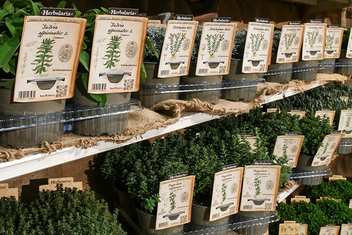 Herbolaria - novost v vrtnih centrih Arboretum
