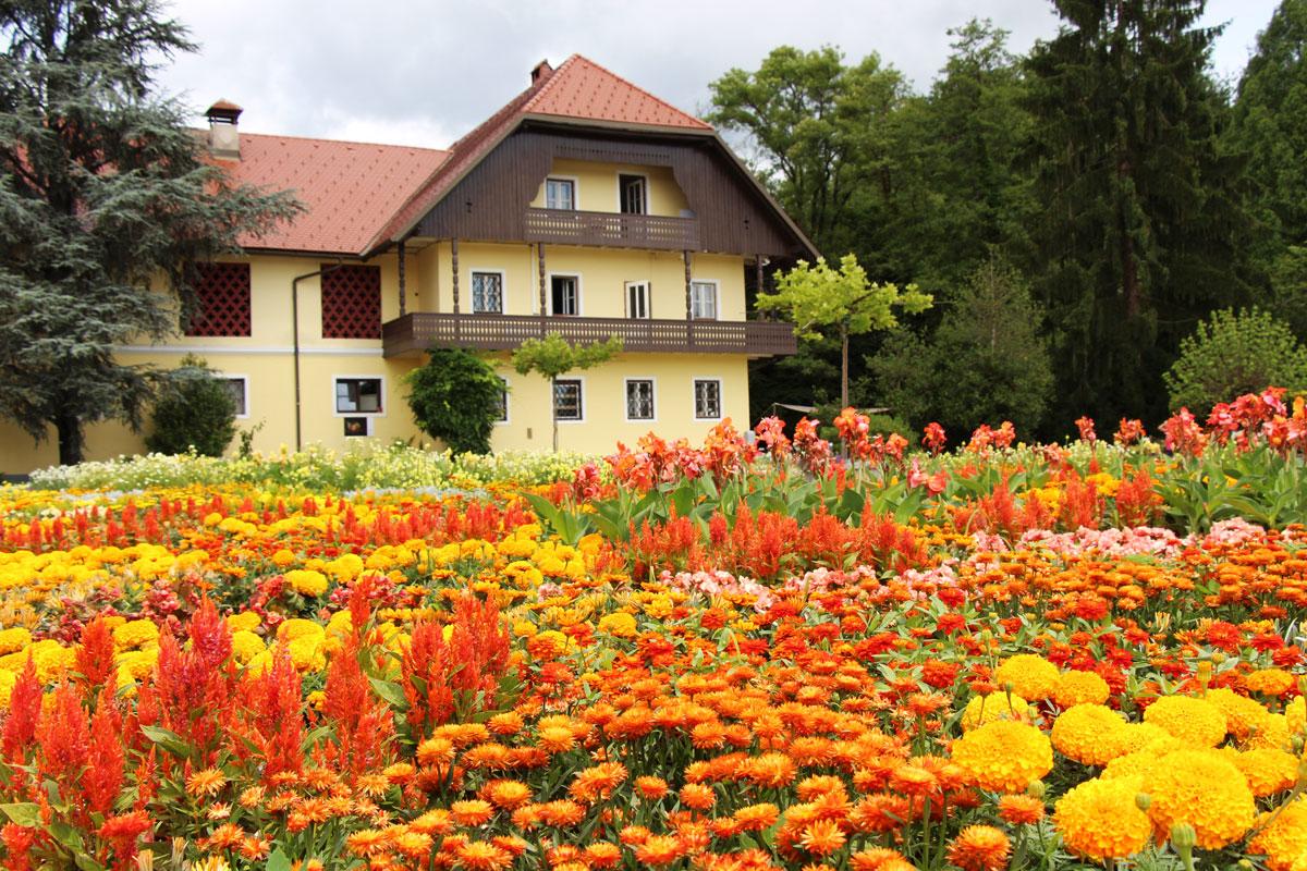 Poletni festival cvetov
